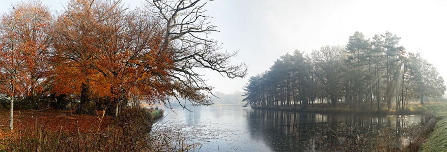 Le lac aux cygnes. Trédion.