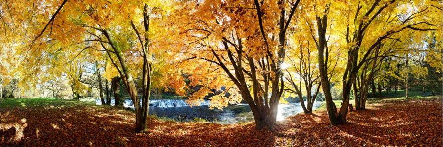 Vallée du Scorff. Après-midi d'automne